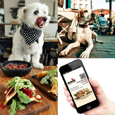 Descuentos en Restaurantes Pet Friendly